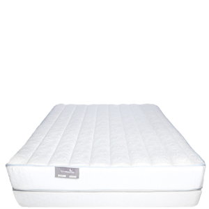 quantum latex firm best mattress